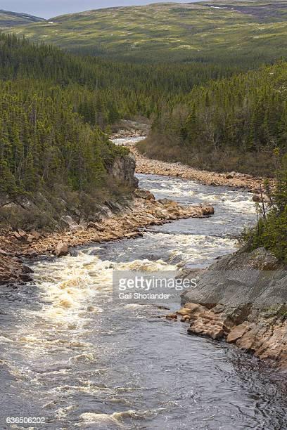 River in Gros Morne