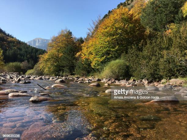 river in hecho valley. huesca province, spain. - riverbank stock pictures, royalty-free photos & images