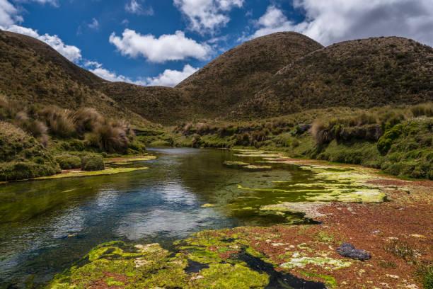 River In Mountain Landscape, Machachi, Pichincha, Ecuador