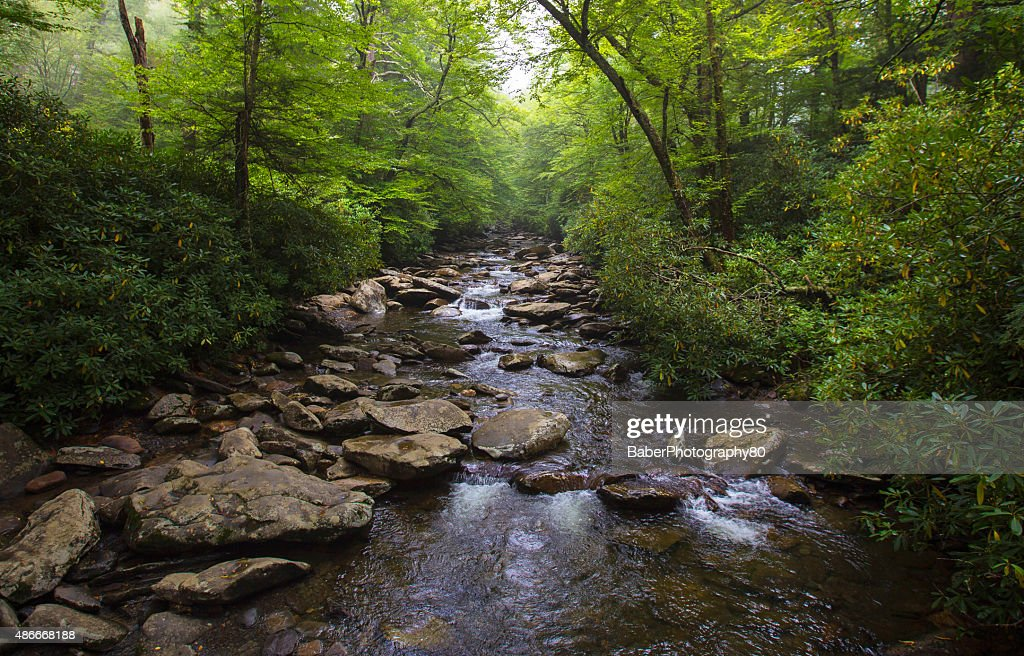 River in North Carolina