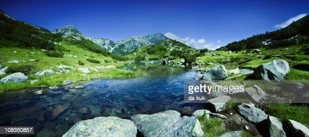 River in Pirin mountains