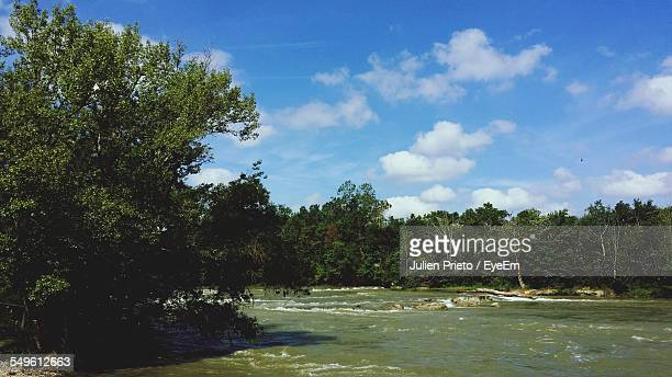 river in spate flowing between trees - abidjan stock pictures, royalty-free photos & images