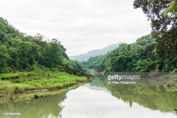 river in the canyon - extreme terrain stock pictures, royalty-free photos & images