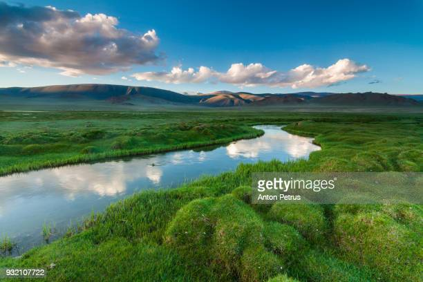 river in the mountains with green banks - flowing water stock pictures, royalty-free photos & images