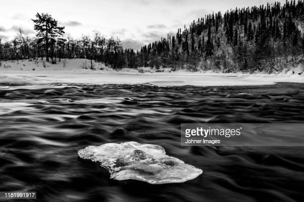 river in winter - stroomversnelling stockfoto's en -beelden