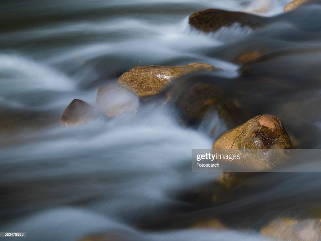 River in Zion National Park : Stock Photo