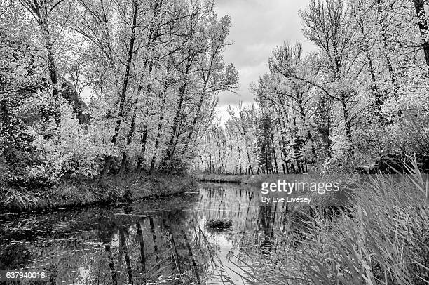 river jucar, cuenca, spain - blanco y negro stock pictures, royalty-free photos & images