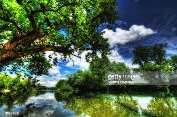 river kolpa - rio kupa - fotografias e filmes do acervo