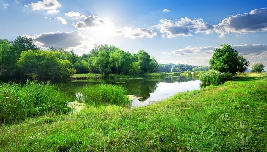 River landscape 467176236