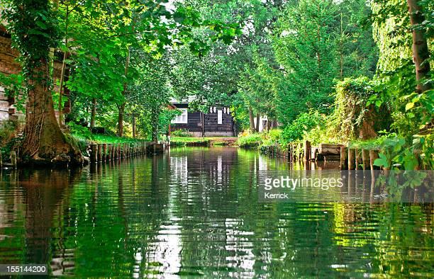 Verde paisaje con río bosque en Spreewald/Alemania