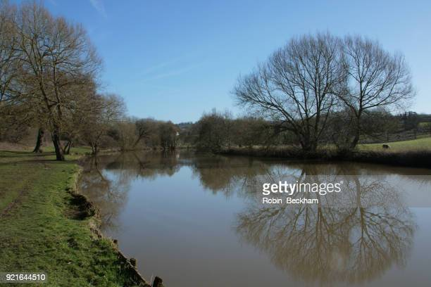 river medway at teston, blue sky in february. - river medway stock photos and pictures