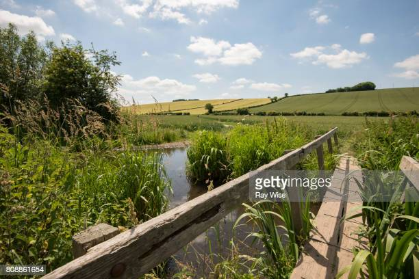 river misbourne running through fields in amersham, buckinghamshire - アマシャム ストックフォトと画像