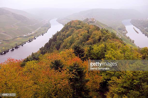 river moselle in autumn - bernd schunack stockfoto's en -beelden