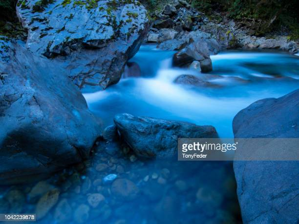 river near milford sound-south island new zealand - southland new zealand stock pictures, royalty-free photos & images