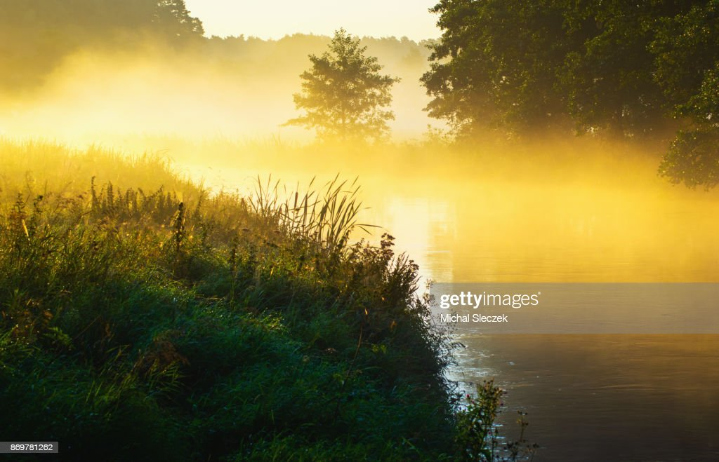 River of the mist : Stock Photo