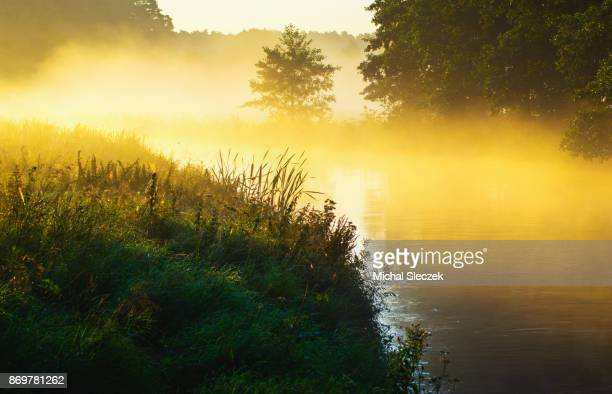 river of the mist - pomorskie province stock photos and pictures