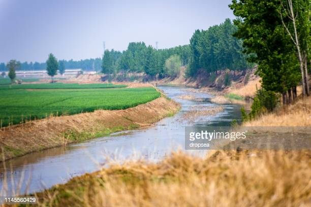 a river - hebei province stock pictures, royalty-free photos & images