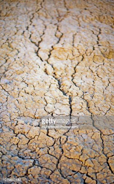 river ran dry - highlywood stock photos and pictures
