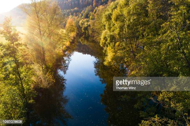 fall trees reflections river neckar