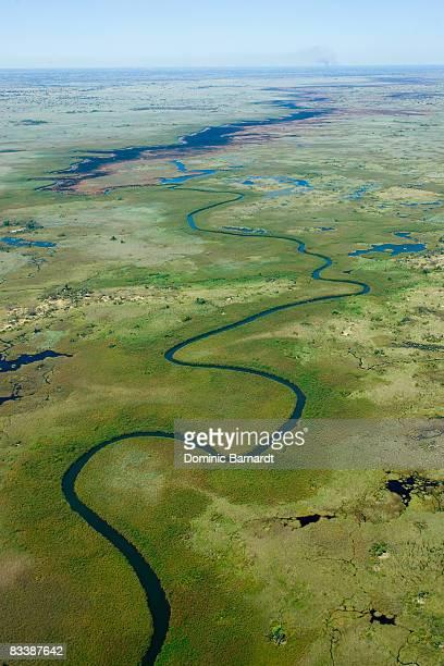 river running through the delta, okavango delta, botswana - hoch position stock-fotos und bilder