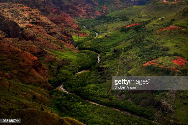 river running through the valley, waimea canyon, hawaii - waimea valley stock photos and pictures