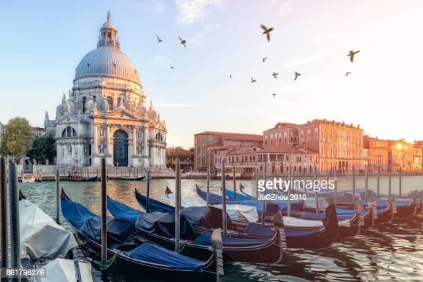 river side view of santa maria della salute church,venice - venezia foto e immagini stock