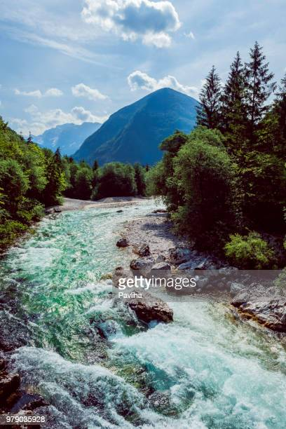river soca close up,trenta valley,primorska,julian alps sovenia,europe - slovenia stock pictures, royalty-free photos & images