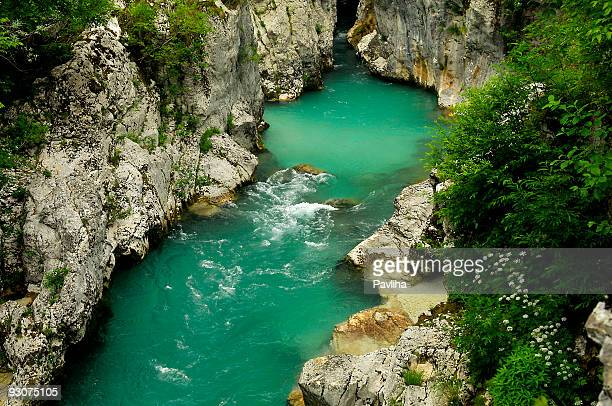river soca in alps - pavliha stock photos and pictures