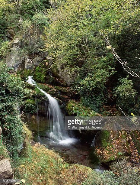 river source and waterfall - alamany fotografías e imágenes de stock