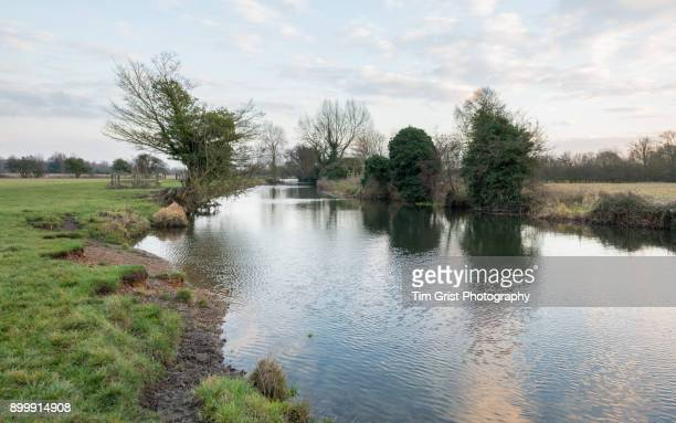 river stour, dedham vale - riverbank stock photos and pictures