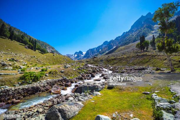 river stream from himalaya mountains - shaifulzamri stock pictures, royalty-free photos & images