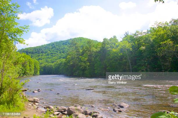 river surrounded by lush foliage in springtime - barry wood stock pictures, royalty-free photos & images