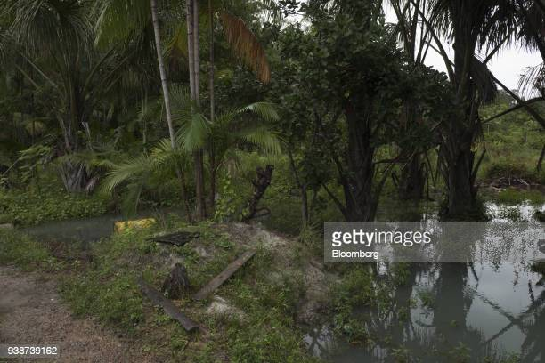 A river that allegedly was affected by flooding at the Norsk Hydro ASA alumina refinery is seen in Barcarena Para state Brazil on Wednesday Feb 28...