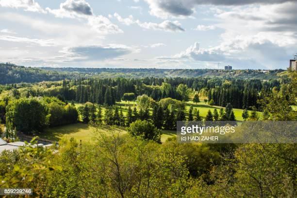 river valley | edmonton | alberta | canada - edmonton stock pictures, royalty-free photos & images