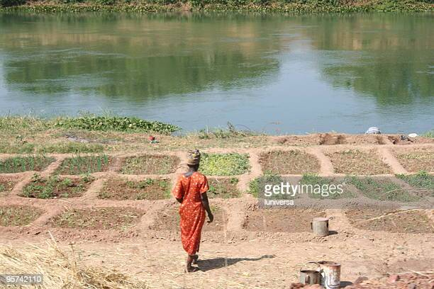 river woman - mali stock pictures, royalty-free photos & images