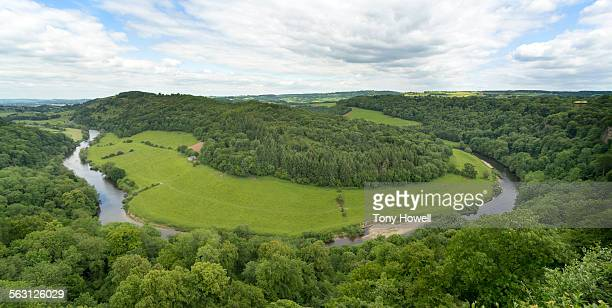 river wye from symonds yat rock - tony howell stock pictures, royalty-free photos & images