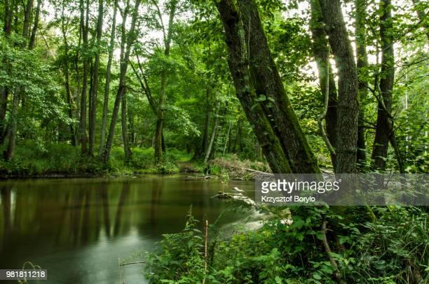 river xxxxxxxxx -  xxxxxxxxx  stock pictures, royalty-free photos & images