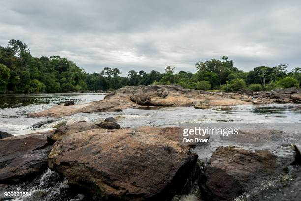 riverbank in suriname - riverbank stock pictures, royalty-free photos & images