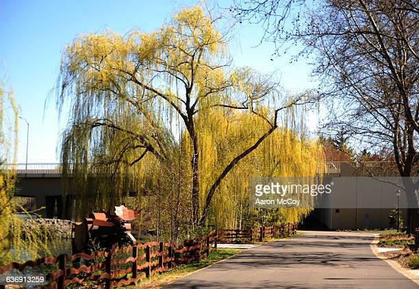riverfront park - riverfront park spokane stock photos and pictures