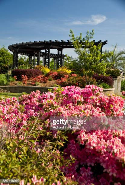 riverview park - shreveport stock pictures, royalty-free photos & images