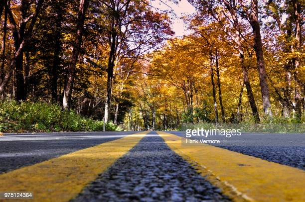 road ahead - hank vermote stock pictures, royalty-free photos & images