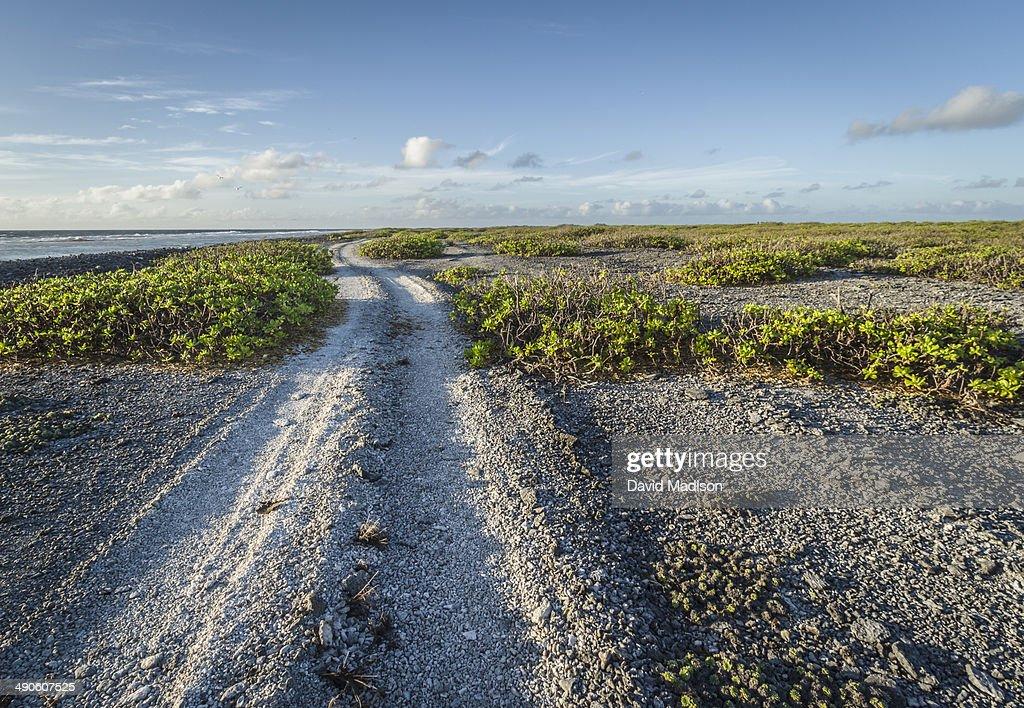 Road along south coast of Christmas Island. : Stock Photo