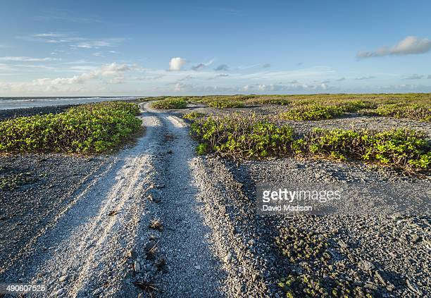 road along south coast of christmas island. - christmas island stock pictures, royalty-free photos & images