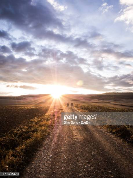 Road Amidst Agricultural Field Against Sky During Sunset