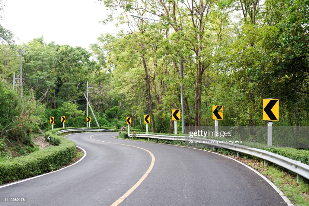 Road Amidst Arrow Signs And Trees : Stock Photo