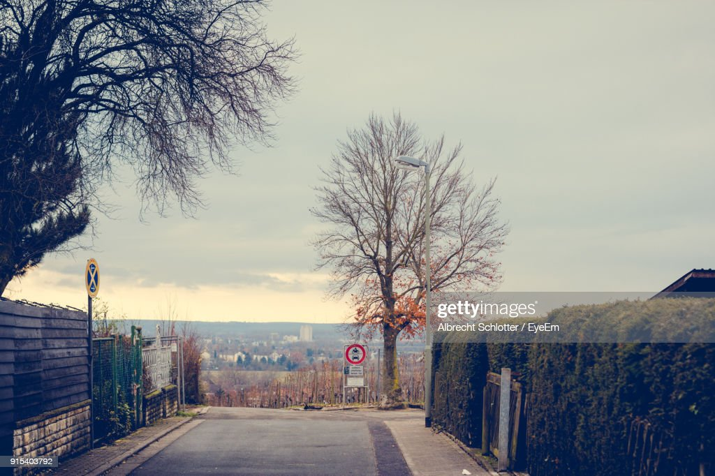Road Amidst Bare Trees Against Clear Sky : Stock Photo