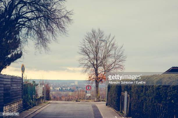 road amidst bare trees against clear sky - albrecht schlotter stock photos and pictures