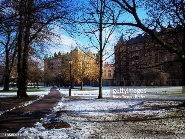 road amidst bare trees and buildings against sky - gothenburg stock pictures, royalty-free photos & images