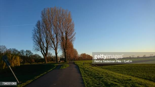 road amidst field against clear sky - rekha stock pictures, royalty-free photos & images