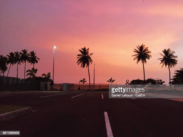 Road Amidst Palm Tree Against Cloudy Sky During Sunset